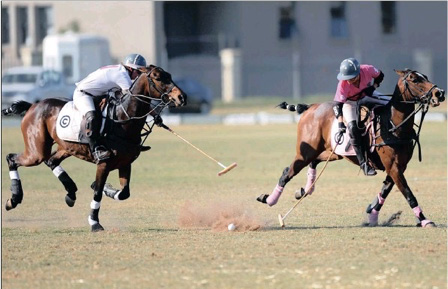 PICTURE: DUMISANI SIBEKO Polo players battle for the ball during a game at the Inanda Club in Sandton in aid of breast cancer awareness yesterday.